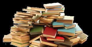 Thema ochtend 'Kinderzwerfboeken'